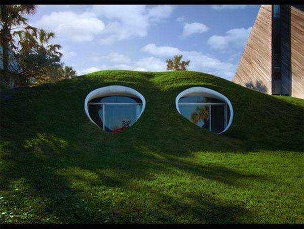 自然と一体化した建築 迷彩ハウス