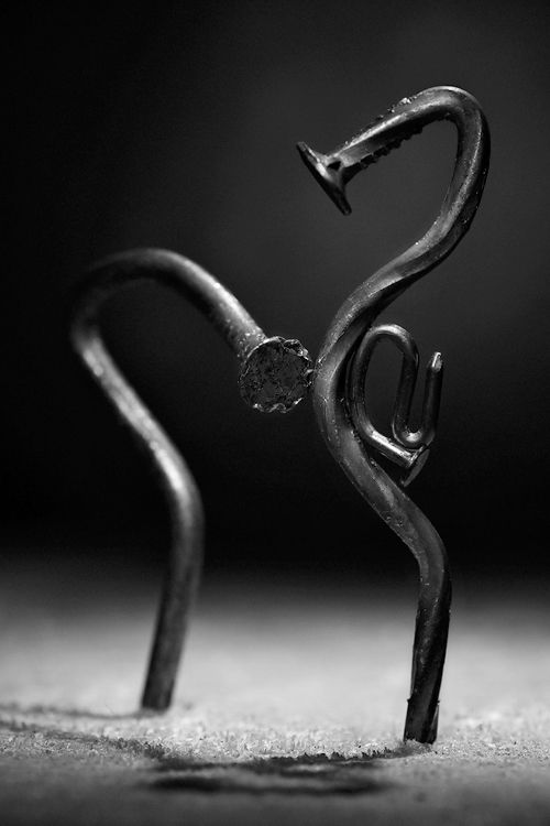 釘による美しい芸術画像 (15)