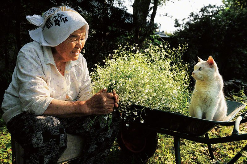 japanese-grandma-and-her-cat-miyoko-ihara-12