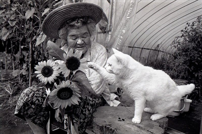 japanese-grandma-and-her-cat-miyoko-ihara-16