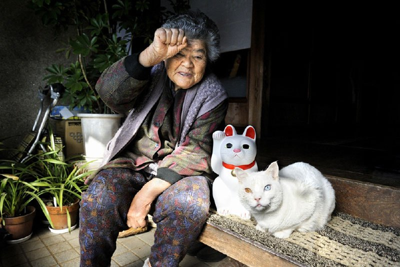japanese-grandma-and-her-cat-miyoko-ihara-20