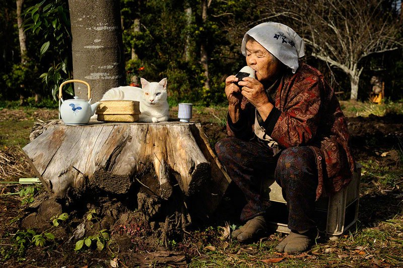 japanese-grandma-and-her-cat-miyoko-ihara-21