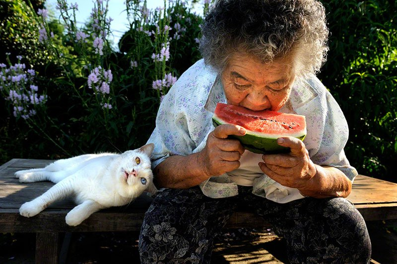 japanese-grandma-and-her-cat-miyoko-ihara-5