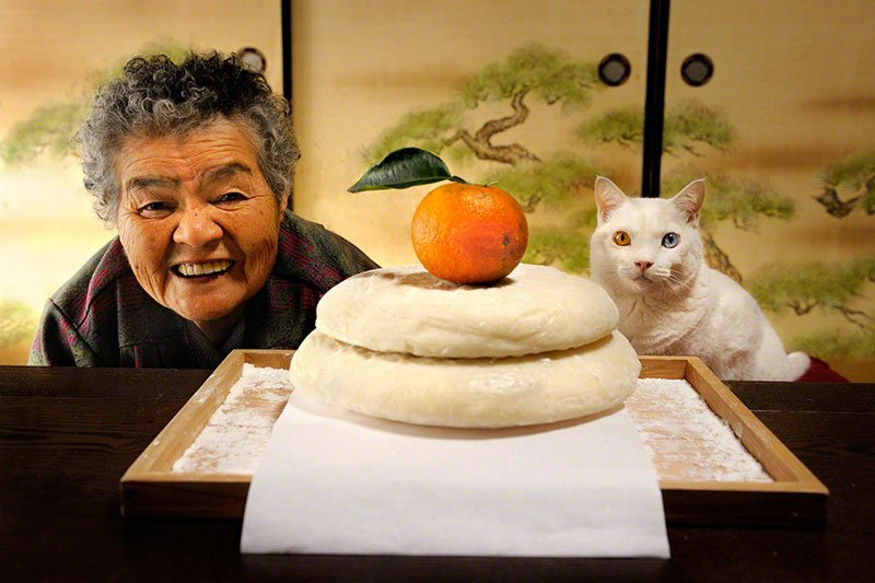 japanese-grandma-and-her-cat-miyoko-ihara-8