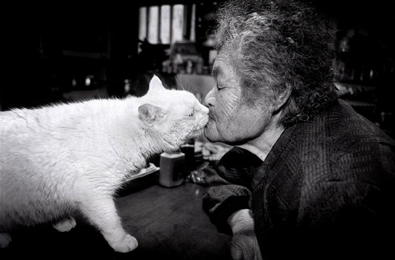 japanese-grandma-and-her-cat-miyoko-ihara-9