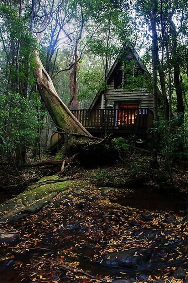 treehouses-for-adults-0010