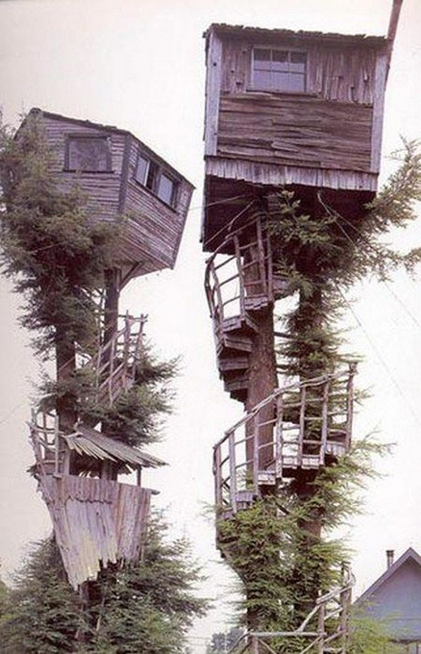 treehouses-for-adults-0023