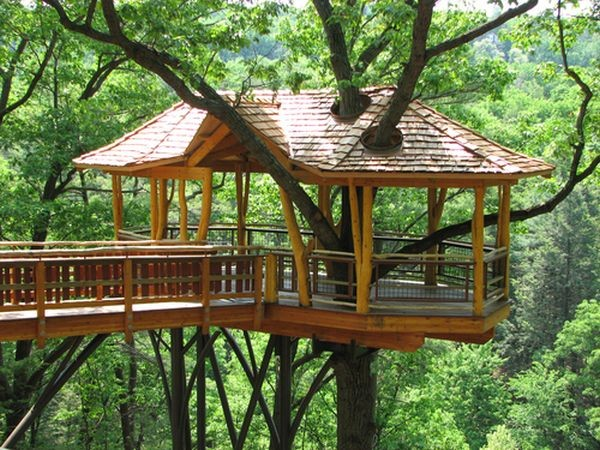 treehouses-for-adults-0039