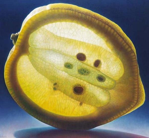 光と半透明の果実が美しい (6)