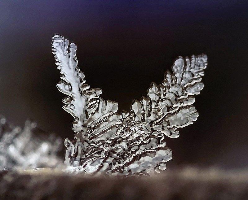 雪の結晶が美しいマクロ写真 (4)
