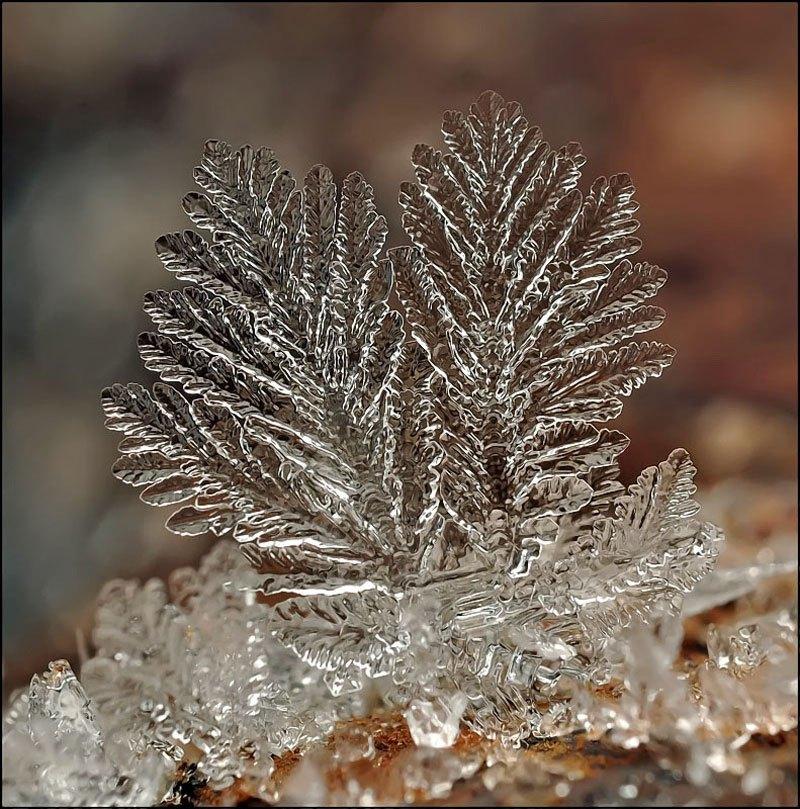 雪の結晶が美しいマクロ写真 (6)