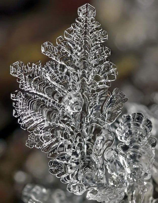 雪の結晶が美しいマクロ写真 (8)