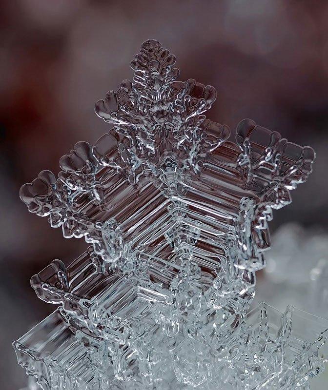 雪の結晶が美しいマクロ写真 (9)