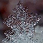 雪の結晶が美しいマクロ写真