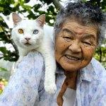 祖母と猫の日常生活