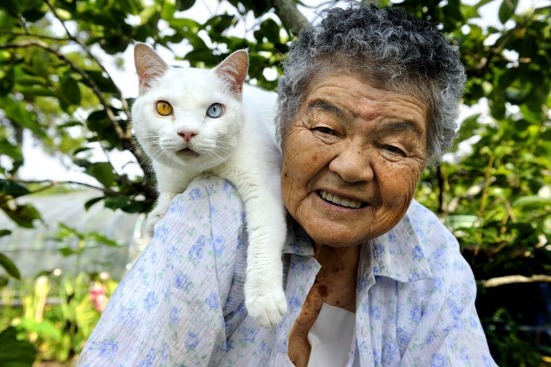 japanese-grandma-and-her-cat-miyoko-ihara-17